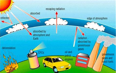 """ANTHROPOGENIC DEFINITION- """"chiefly of environmental"""