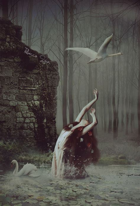 200 best images about Ethereal Swans on Pinterest | Swan