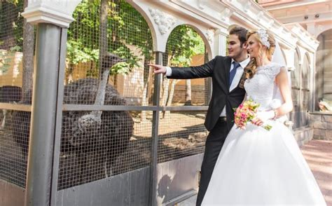 Party Animals: How to Rent Animals for Your Ceremony