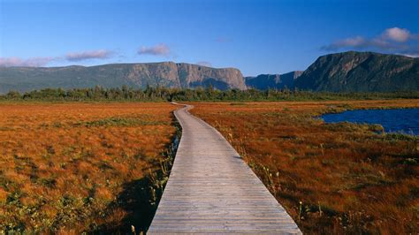 A Guide to Canada's Newfoundland, the Rugged, Remote