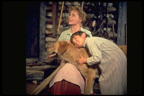 Watch Old Yeller 1957 full movie online or download fast